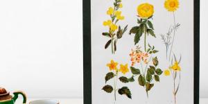 Fredagsfund #55: Botaniske plakater